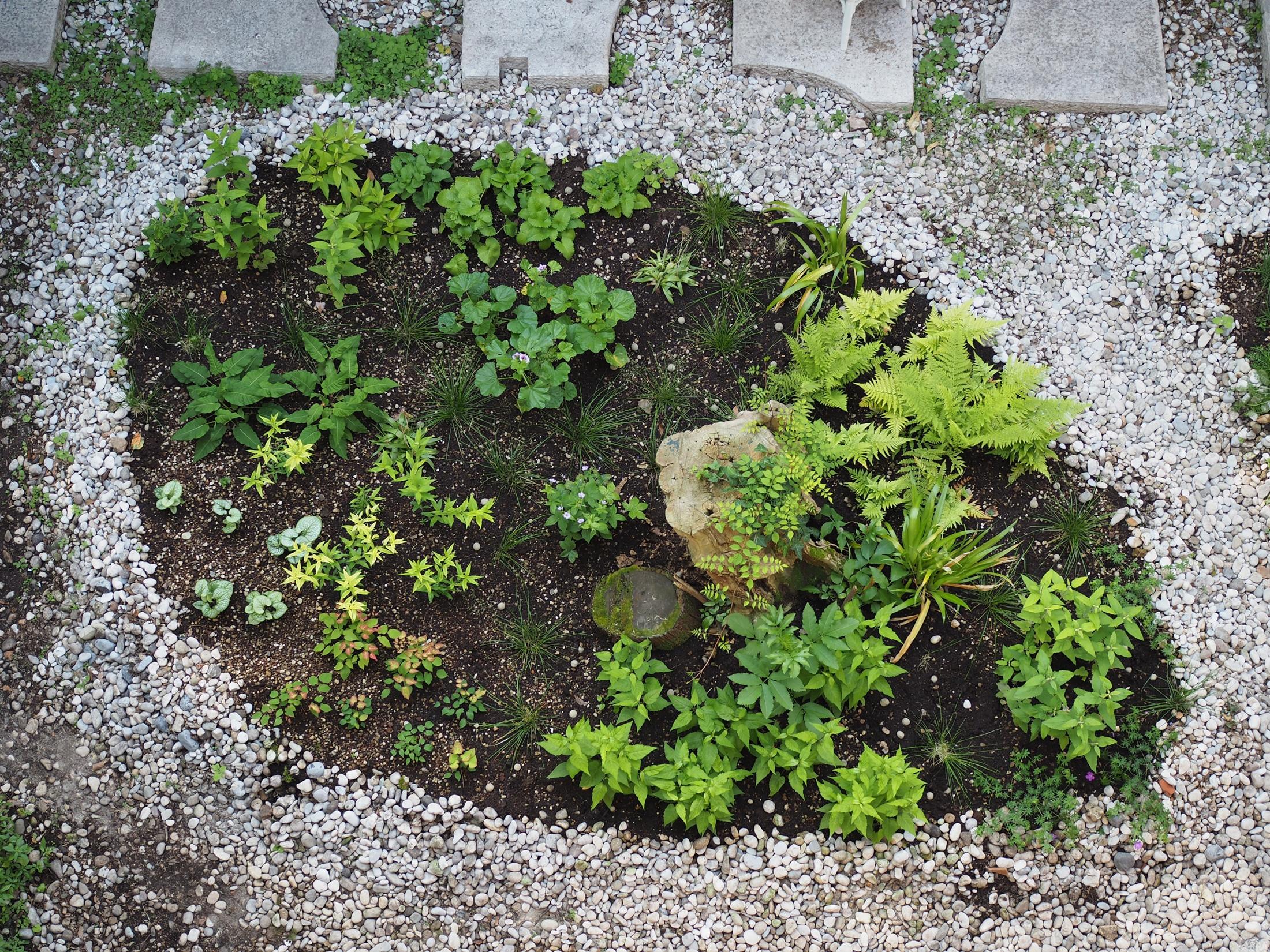 Jardin (in)temporal – Ortofoto FAD